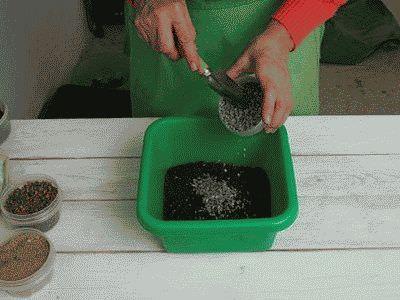 готовим почву для пересадки