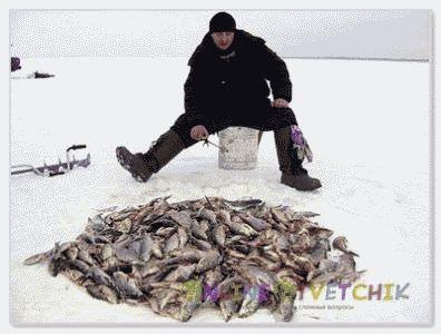 Что нужно для успешной зимней ловли?