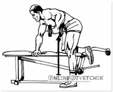 Основной комплекс упражнений