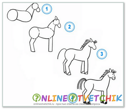 Этапы рисования лошади