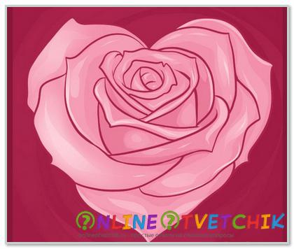 Роза - сердце