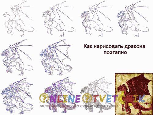 дракон рисуем этапами