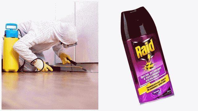 Как избавиться от тараканов в квартире в домашних условиях?