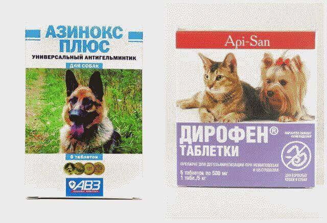 чистотел от глистов для собак отзывы ветеринаров