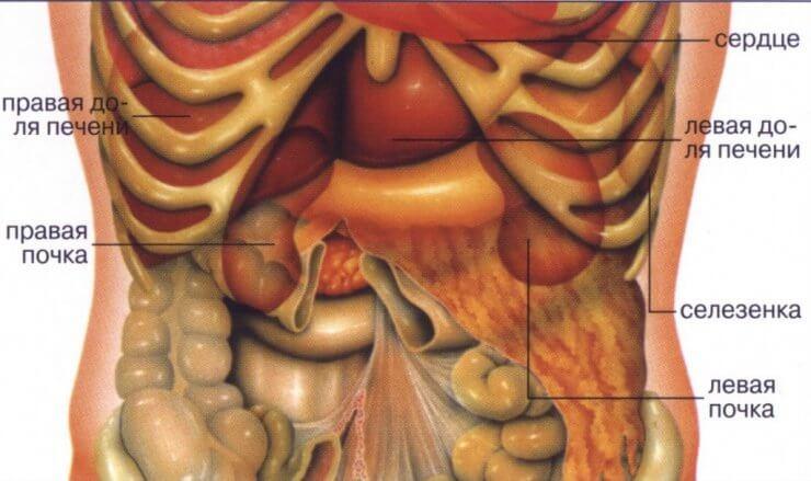Упражнения при боли в спине во время беременности